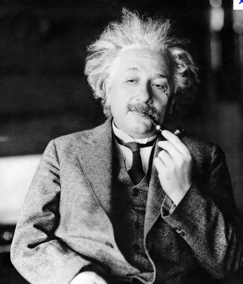 Einstein philosophe créatif crustacé