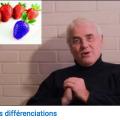 Différenciation-1